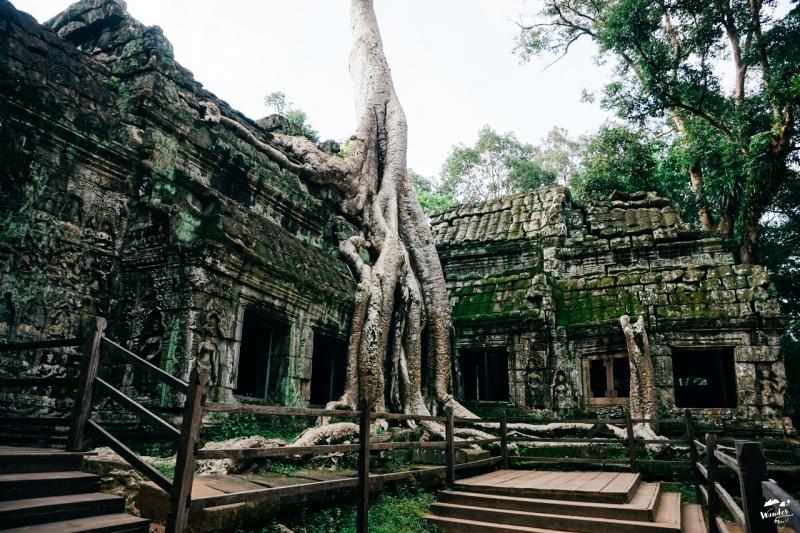 นครวัด ปราสาทตาพรหม taphrom ผจญภัย เที่ยวคนเดียว กัมพูชา เดินทาง อังกอร์วัด tomb raider angkor wat เที่ยวกัมพูชา เสียมเรียบ