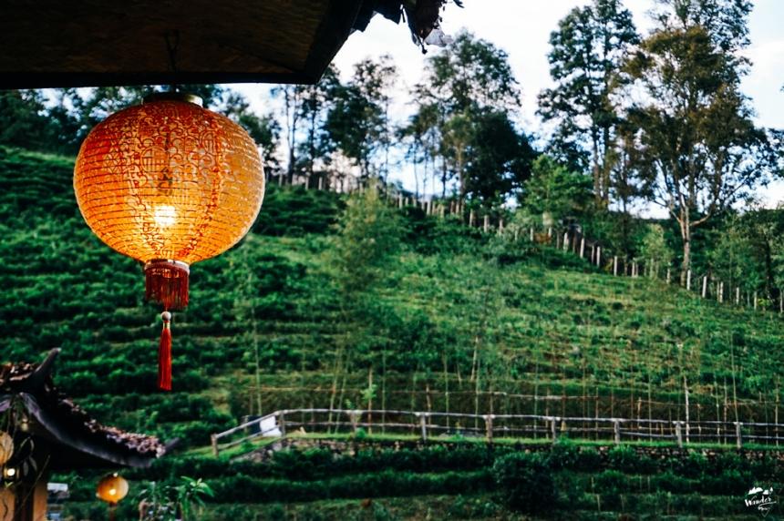 แม่ฮ่องสอน เที่ยวแม่ฮ่องสอน บ้านรักไทย ลีไวน์รักไทย wandermore บล็อกเกอร์สายเที่ยว เที่ยวคนเดียว ท่องเที่ยว ไร่ชา