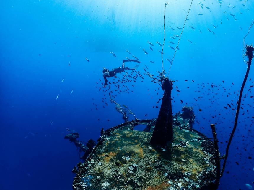 ดำน้ำ, ฟรีไดฟ์, freedive, freediving, เกาะช้าง, อ่าวไทย, ทริปดำน้ำ, ดำน้ำตัวเปล่า, ดำน้ำฟรีไดฟ์, ดำเรือจม, ดำเรือ, เรือจม, เรือหลวงช้าง