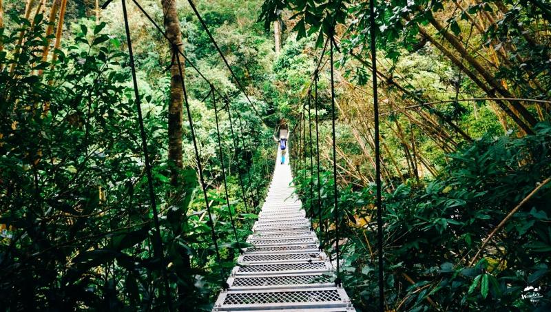 ลาวใต้, ที่ราบสูงโบโลเวน, เที่ยวคนเดียว, ไปเอง, เดินป่า